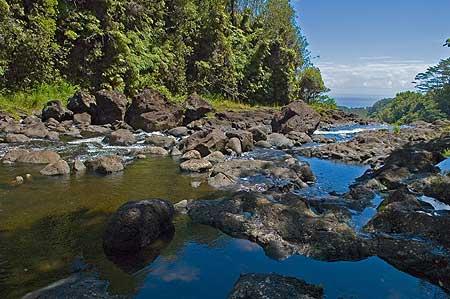 Stream near Hilo