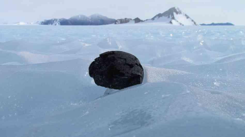 Meteorite from Mars found in Antarctica (ANSMET)