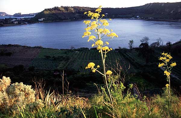 The Averna caldera lake