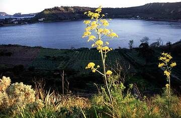 Le lac de cratère caldeirique d'Averno