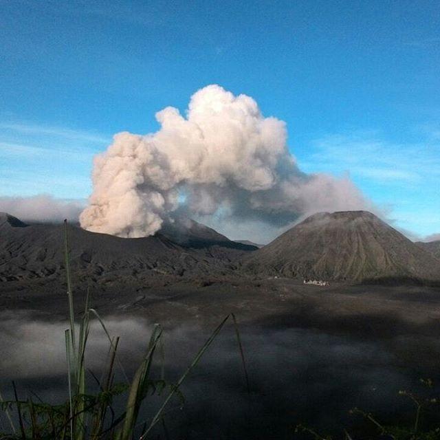 Ash emission from Bromo yesterday (image: PVMBG / Instagram)