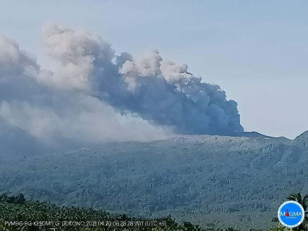 Dense ash column erupted from Dukono volcano on 20 April (image: PVMBG)