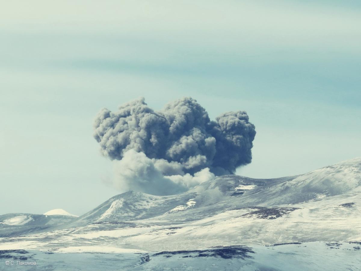The eruption column at Ebeko volcano captured from Banjou on 3 April (image: KVERT)