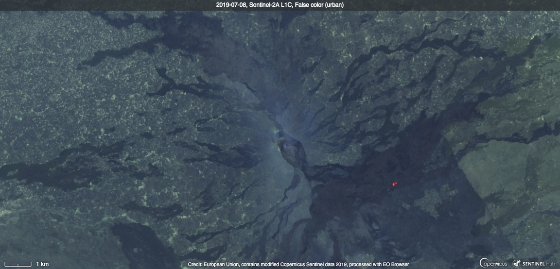 Satellite image of Erta Ale from yesterday with hot spots on the SE flank and at the summit (image: Sentinel Hub)