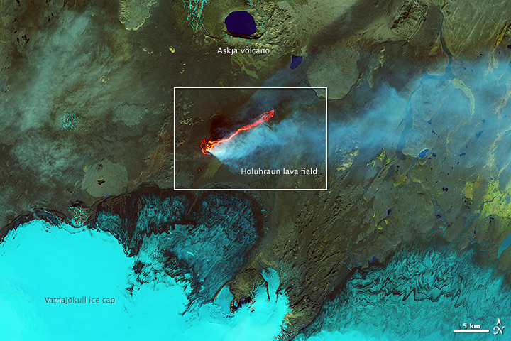 Landsat-8 image of the area of the eruption (NASA)