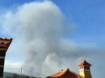 Ash plume from La Palma's eruption this morning (image: Victor Melo / VolcanesDeCanarias.org)