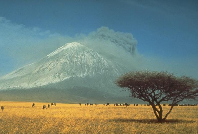 Ein explosiver Ausbruch von Tansanias Ol Doinyo Vulkan im Jahr 1966.  Explosive Aktivität begann im August 1966 nahe dem Ende eines Ausbruchs, der im Jahr 1960 begann, der aus ruhigem Ausflüssen von Lava im Gipfelkrater bestand.  Ascheauswürfe von vorherigen Ausbrüchen machen die Neigungen des Vulkans wie Schnee weiß. (Photo von Gordon Davies, 1966, / freundlich überlassen durch: Celia Nyamweru, Kenyatta Universität).