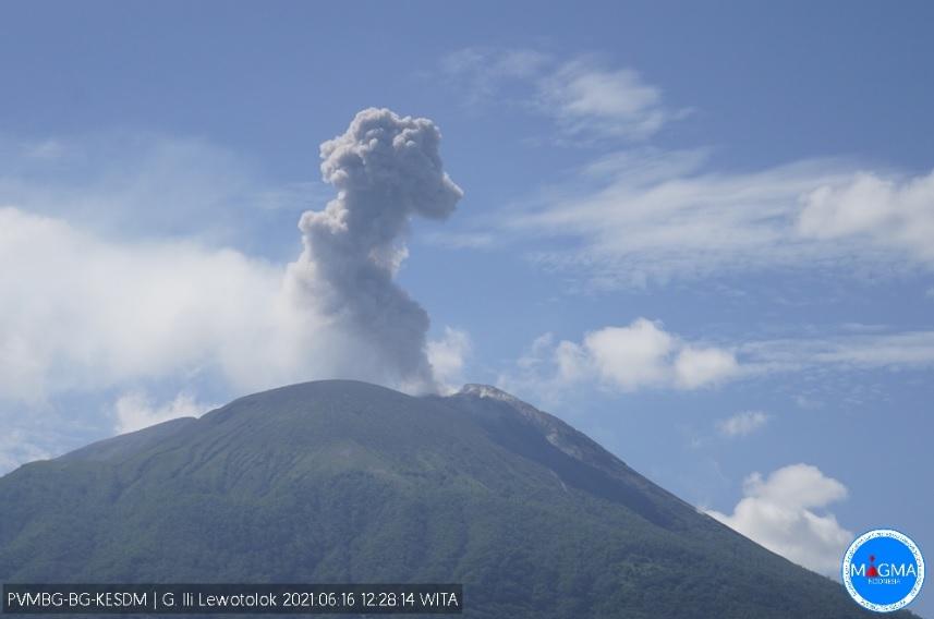 Today's eruption at Lewotolo volcano (image: PVMBG)