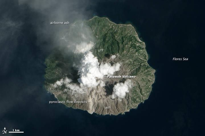 NASA Earth Observatory image of Paluweh on 12 Feb 2013 by Jesse Allen and Robert Simmon