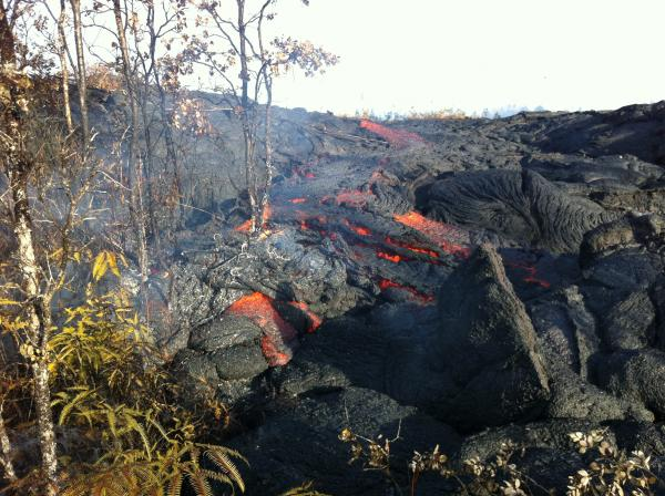 Kīlauea's East Rift Zone lava flow continues to advance downslope toward the Pahoa Marketplace. This photo is of a small breakout from the edge of the inflated flow several hundred meters (yards) back from the active front. (HVO)