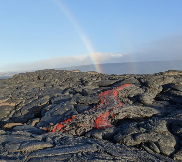 Pahoehoe lava flow from Kilauea's 61G lava flow in the coastal flat on Friday (image: HVO/USGS)