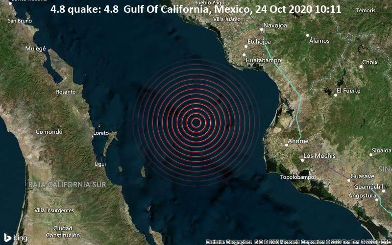 4.8 quake: 4.8  Gulf Of California, Mexico, 24 Oct 2020 10:11