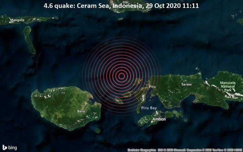 4.6 quake: Ceram Sea, Indonesia, 29 Oct 2020 11:11