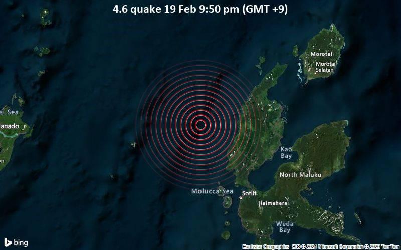 4.6 quake 19 Feb 9:50 pm (GMT +9)