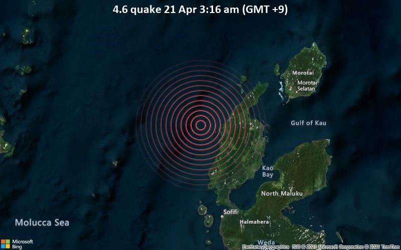 Leichtes Erdbeben der Stärke 4.6 - Maluku Sea, 77 km westlich von Tobelo, Indonesien, am Dienstag, 20. Apr 2021 um 18:16 GMT