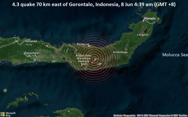 Leichtes Erdbeben der Stärke 4.3 - 70 km östlich von Gorontalo, Indonesien, am Montag,  7. Jun 2021 um 20:39 GMT