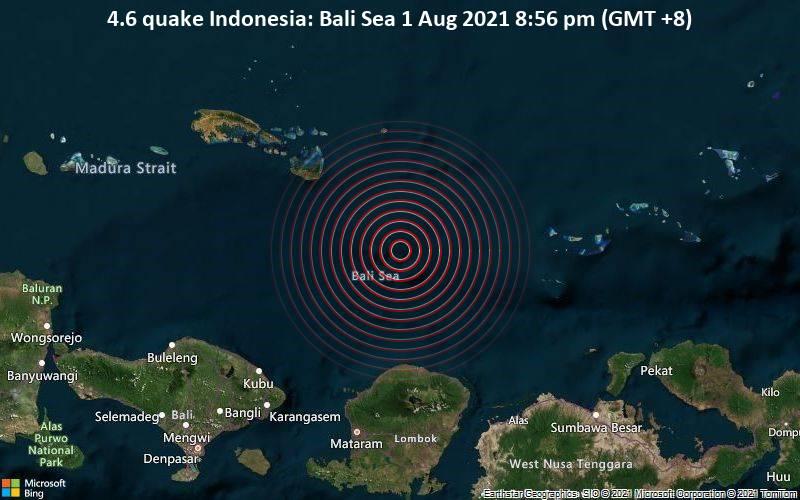 4.6 quake Indonesia: Bali Sea 1 Aug 2021 8:56 pm (GMT +8)