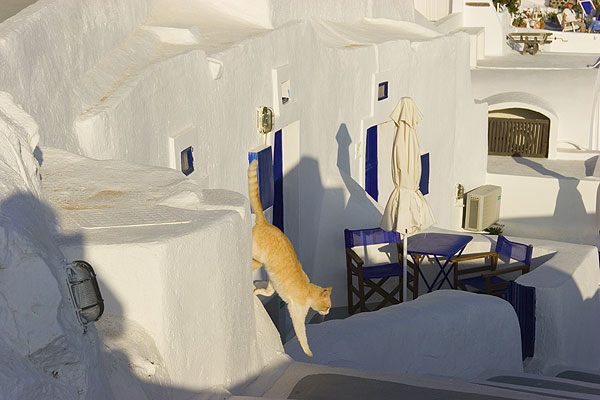 Appartment in Oia