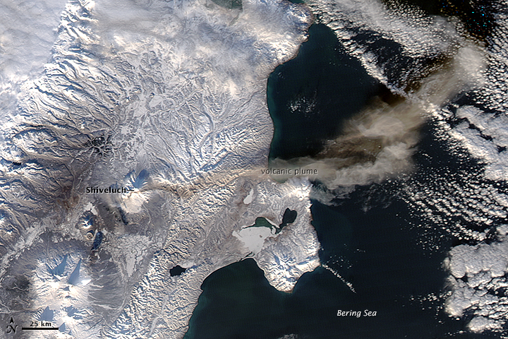 NASA satellite image of the ash plume from Shiveluch volcano on 23 Nov 2014 (NASA Earth Observatory)