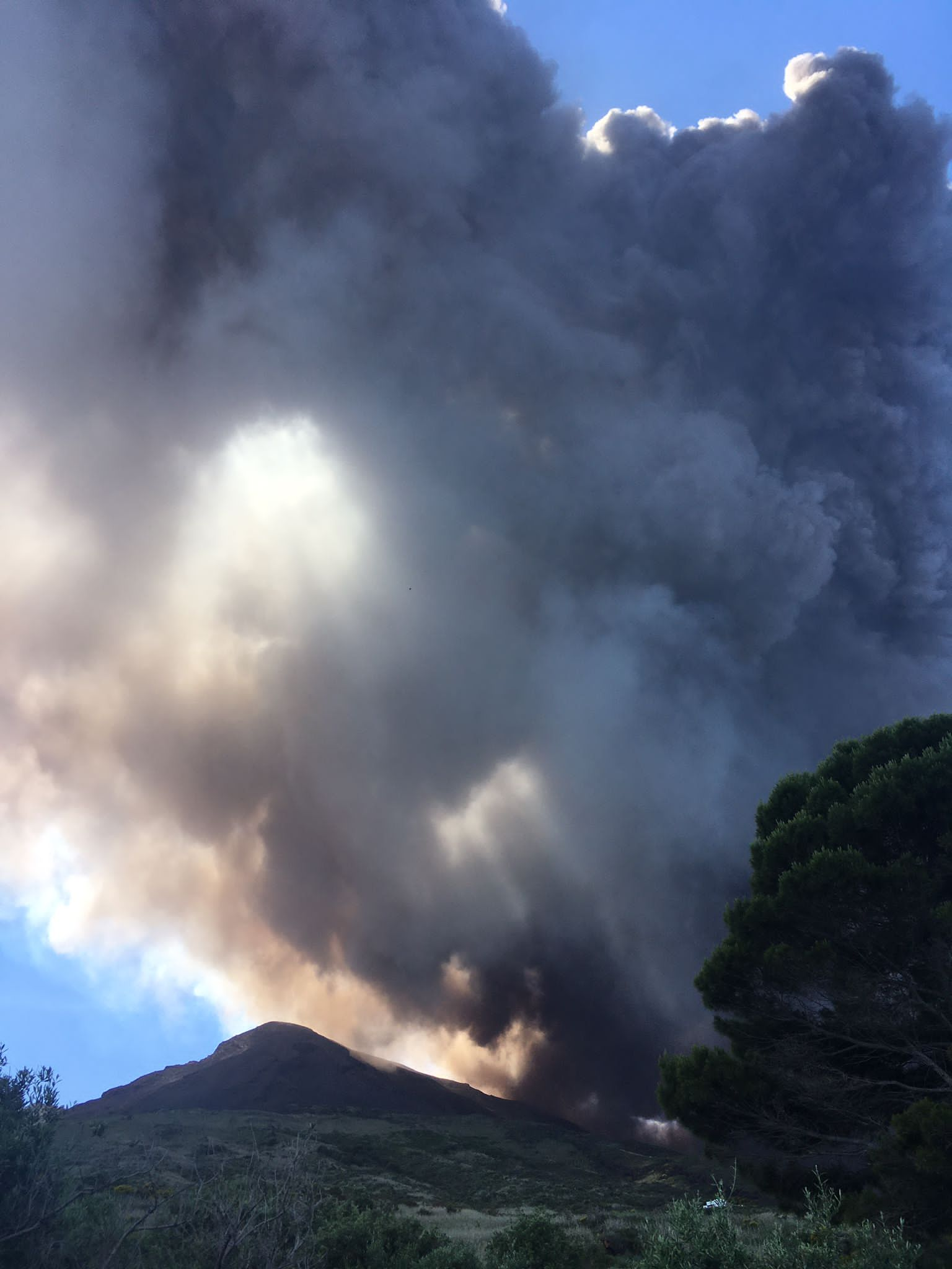 Ash plume from Stromboli this afternoon (image: Francesca Utano)