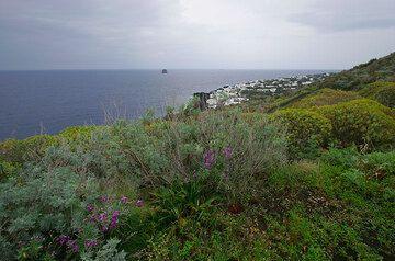 Stromboli Island from Punta Labronzo