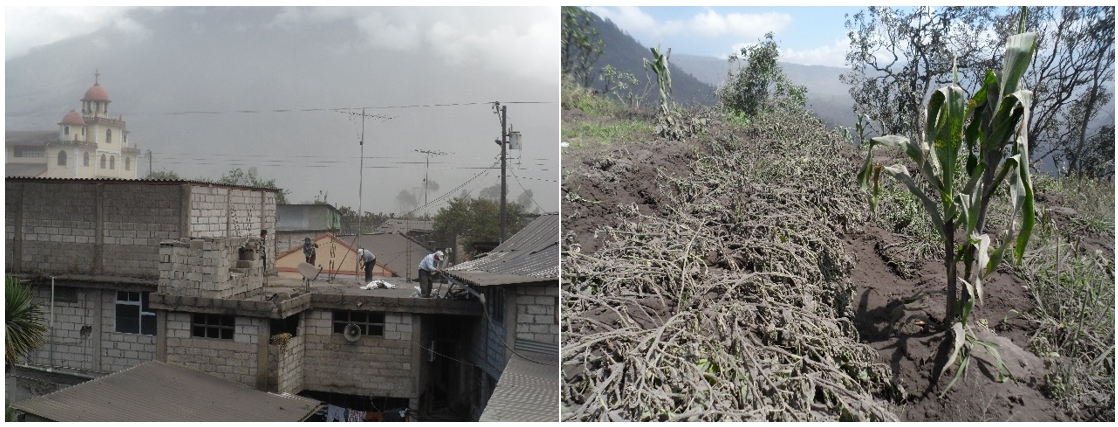 Effects of recent ash falls in Cotaló and Pillate (images: IGEPN)