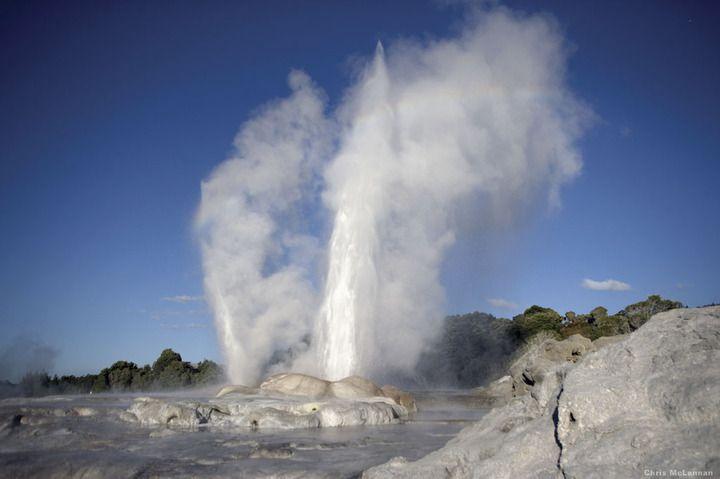 Geysers at Rotorua geothermal field (photo: Chris McLennan)