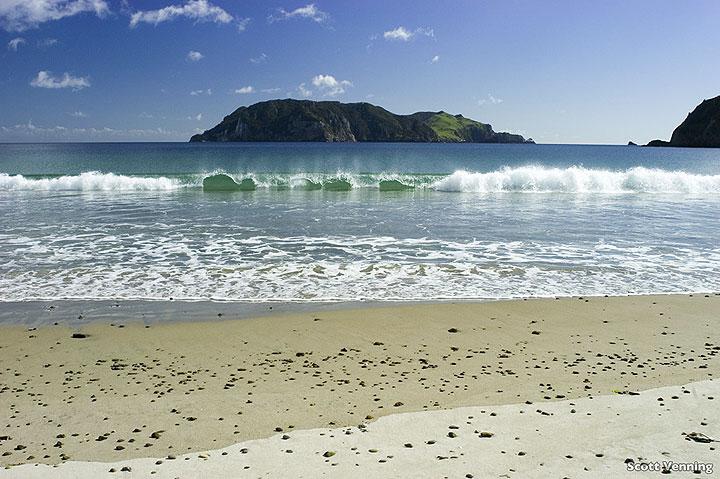 White sand beach Harataonga, New Zealand (photo: Scott Venning)