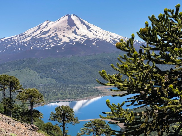 Llaima volcano (photo: S. Naser)