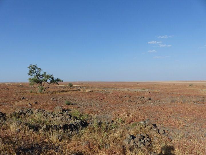Red steppe to half-desert landscape on the road to Logiya (Ingrid Smet - November 2015)