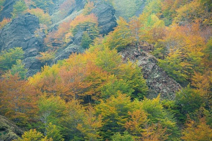 Autumn colours on the Valle´s steep cliff faces