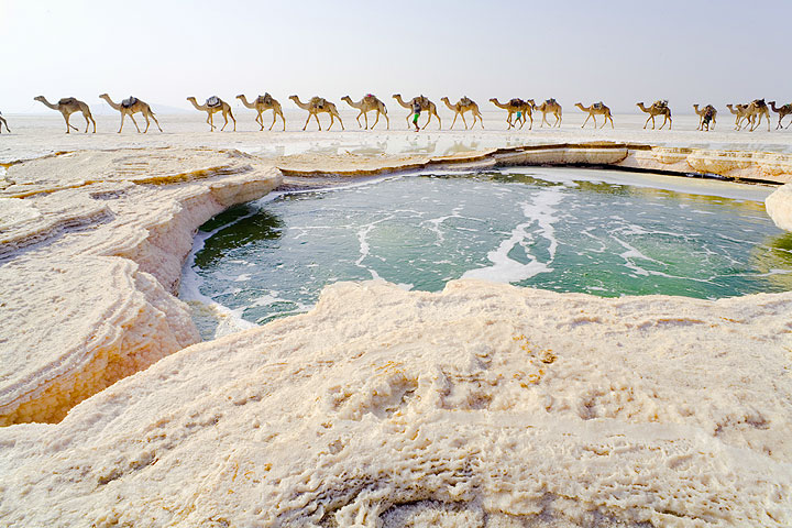 Camel caravan passing a hot spring on the salt lake