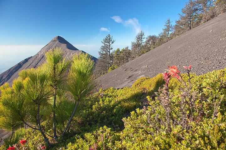 Fuego volcano seen from Acatenango