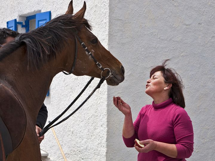 Barbara and the horse of her son