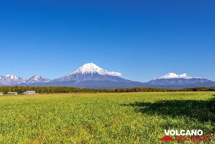 View of Koryaksky and Avachinsky volcanoes from the field next to our datcha.