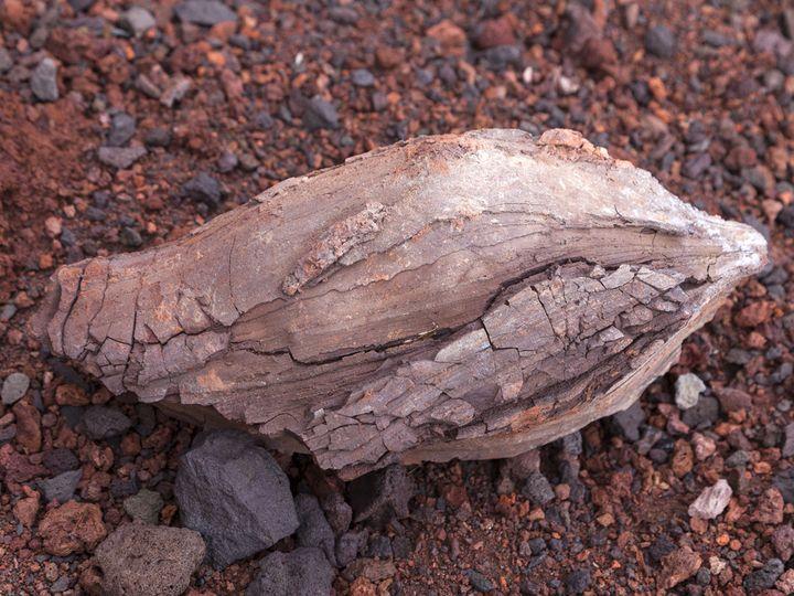 Nice lava bomb from La Palma