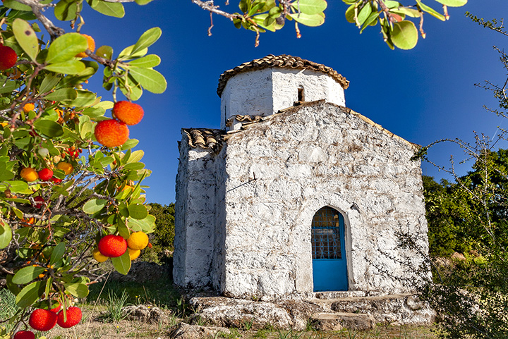 The church of Agios Konstantinos&Elenis near Kounoupitsa valley and the red fruit of the strawberrytree.