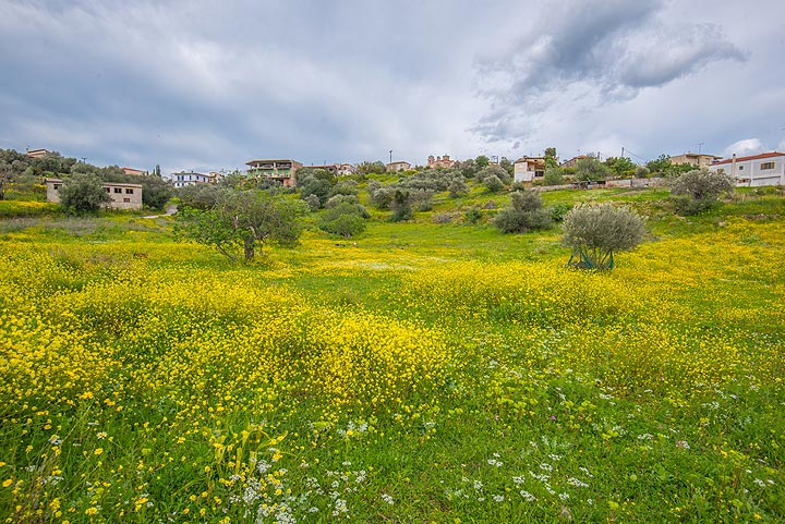 Taktikoupolis village in spring