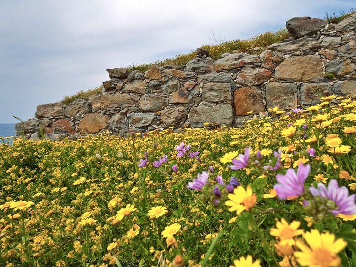 Die Mauer von Phylakopi (c) T. Schorr