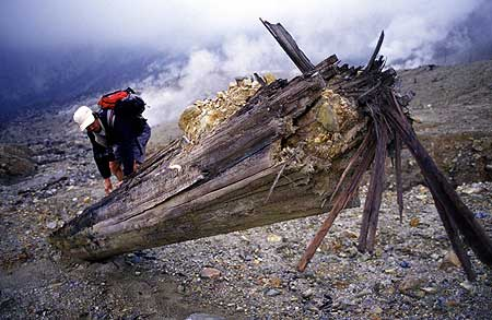 A large tree unrooted during the last eruption of Papandayan volcano (2001)
