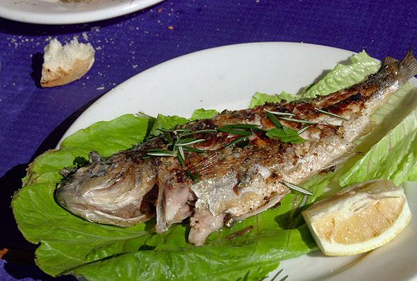 Fisch auf der Speisekarte, frisch und örtlich gefangen