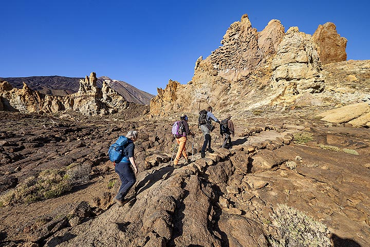 The VolcanoDiscovery group hiking in the caldera of Teide volcano.
