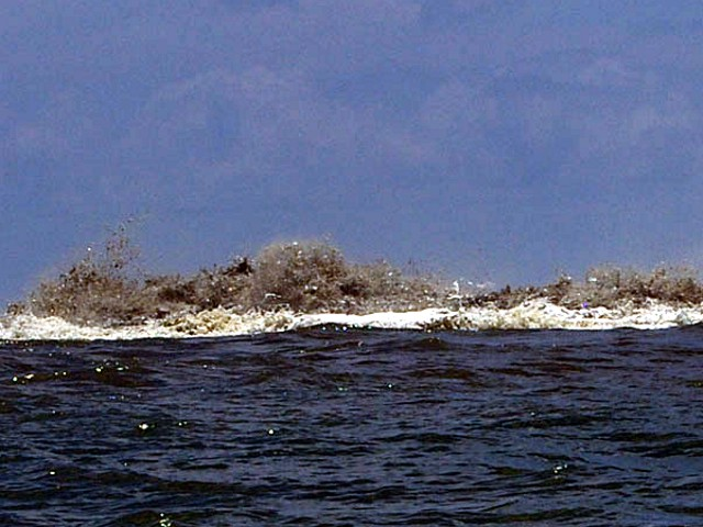 Some of the stronger activity observed at Kavachi on 6 April 2007 included very turbulent ash-laden water above the vent, explosive and percussive noises, and discolored water downcurrent of the vent. Courtesy of Roy Hall / The Wilderness Lodge website.